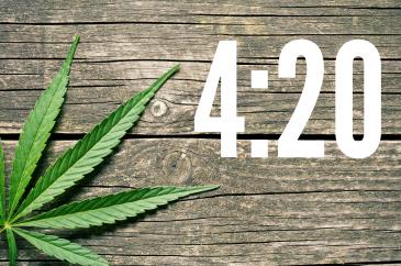Weed 4:20
